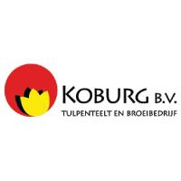 KoBurg B.V.